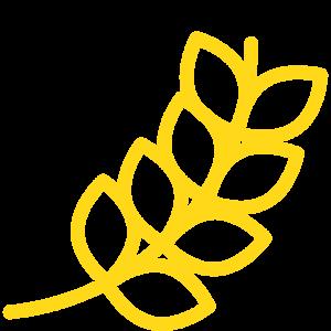 Farine selezionate macinate a pietra